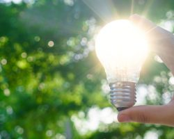 10 Ways Your Business Can Go Green And Save Money